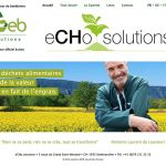 echo-solutions-2019
