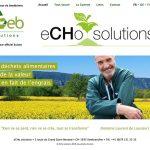 echo-solutions-2019